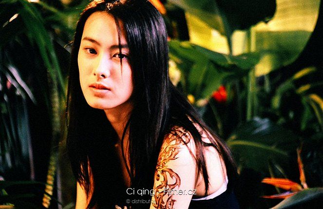 Ci qing download