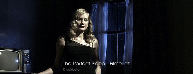 The Perfect Sleep download