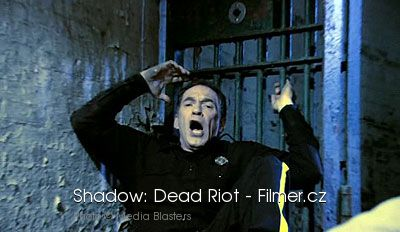 Shadow Dead Riot download