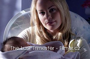 The Last Trimester download