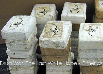 American Drug War The Last White Hope download