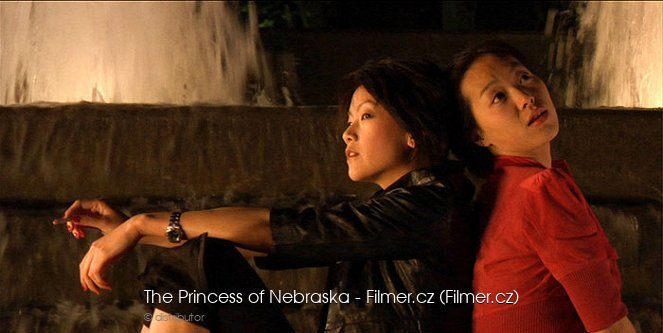 The Princess of Nebraska download
