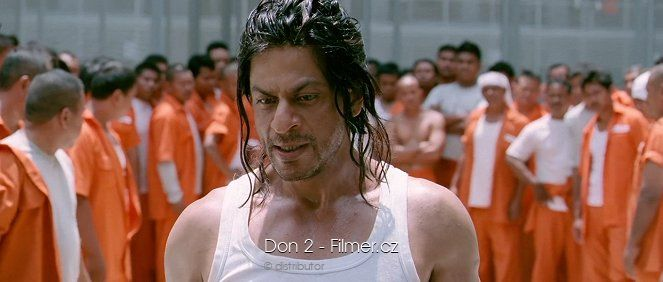 Don 2 download