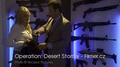 Operation Desert Stormy download