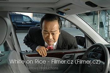 White on Rice download