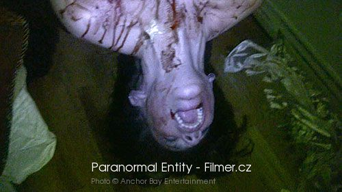 Paranormal Entity download