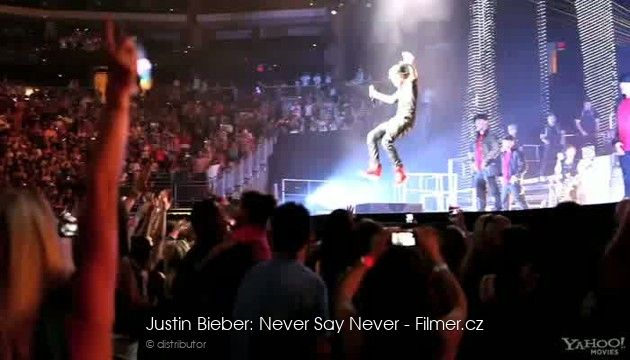 Justin Bieber Never Say Never download