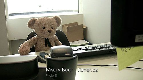 Misery Bear download