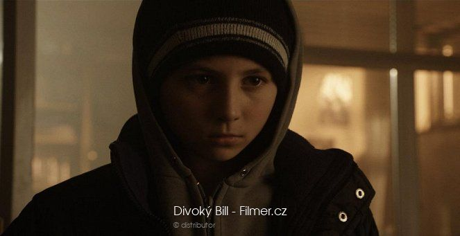 Divoký Bill download