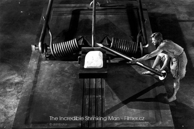 The Incredible Shrinking Man download