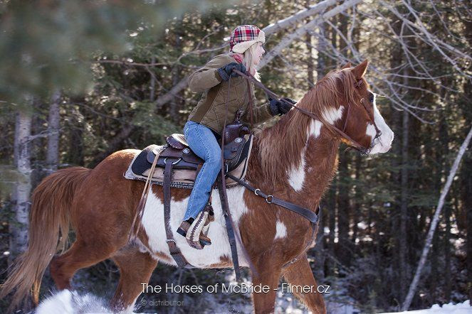The Horses of McBride download