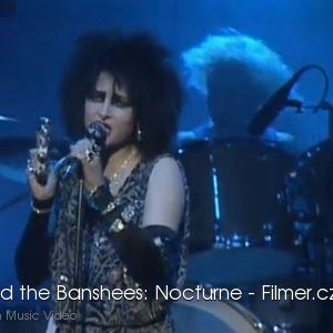 Siouxsie and the Banshees Nocturne download