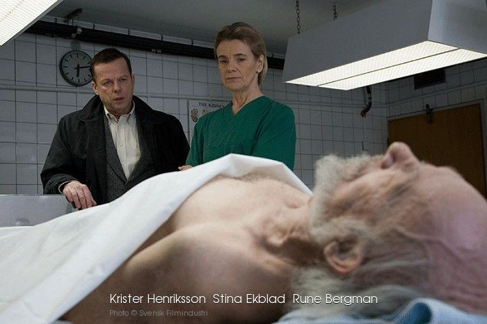 Wallander Luftslottet download
