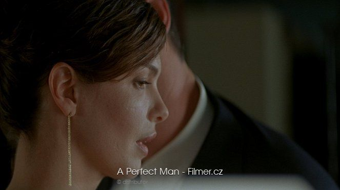 A Perfect Man download