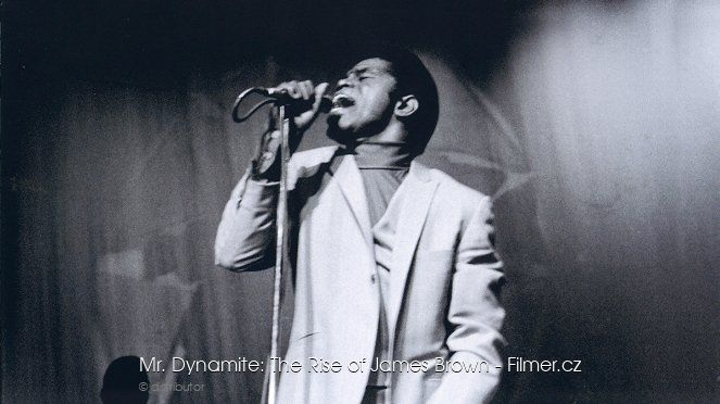 Mr Dynamite The Rise of James Brown download