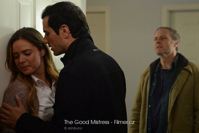 The Good Mistress download