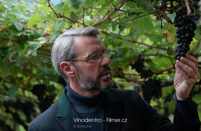Vinodentro download