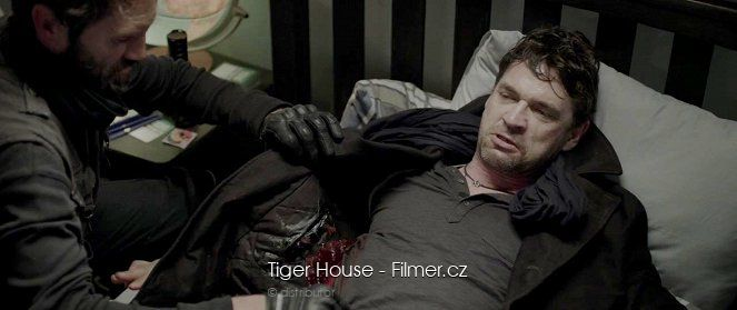 Tiger House download