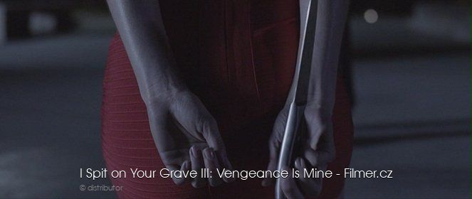 I Spit on Your Grave 3 download