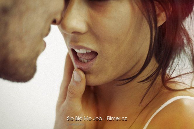 Slo Blo Mo Job download