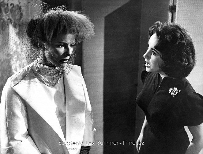 Suddenly Last Summer download