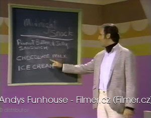 Andys Funhouse download