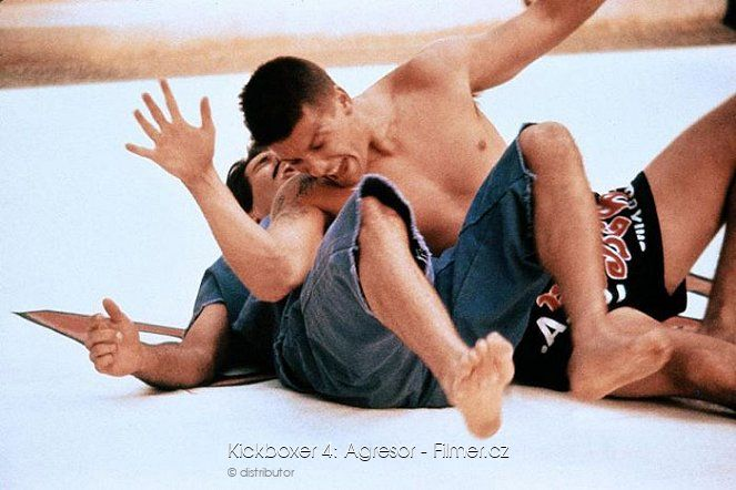 Kickboxer 4 Agresor download