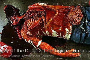 Day of the Dead 2 Contagium online
