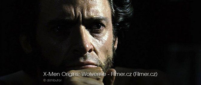X-Men Origins Wolverine online