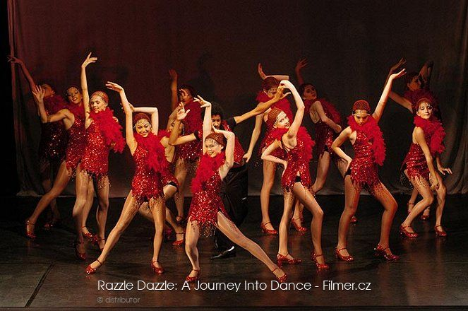 Razzle Dazzle A Journey Into Dance online