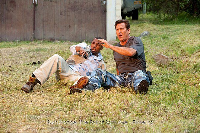 Burn Notice The Fall of Sam Axe online