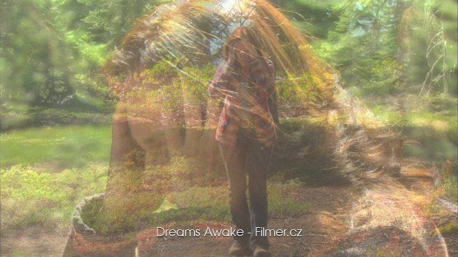 Dreams Awake online