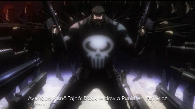 Avengers Confidential Black Widow & Punisher online
