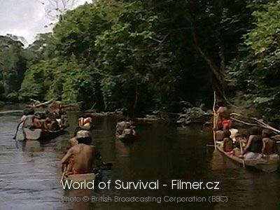 World of Survival