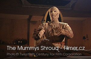The Mummys Shroud