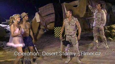 Operation Desert Stormy