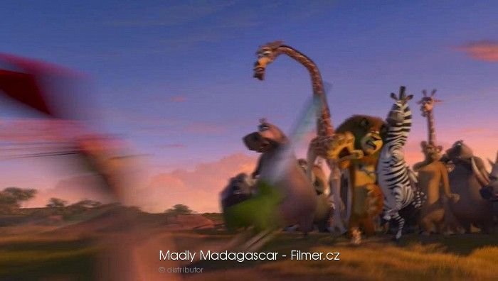 Madly Madagascar 2013 Film – HD Wallpapers