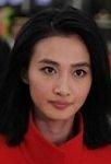 Wenjuan Feng